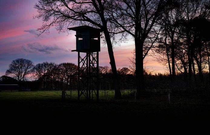 Hoogzitter voor jagers aan de bosrand in Vlierden.