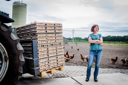 Wilma van den Heuvel en haar biologische kippenboerderij. Zij heeft haar eieren moeten terugroepen en moet eieren laten vernietigen. Haar man op de tractor brengt de afgekeurde eieren op een andere plek op het erf.
