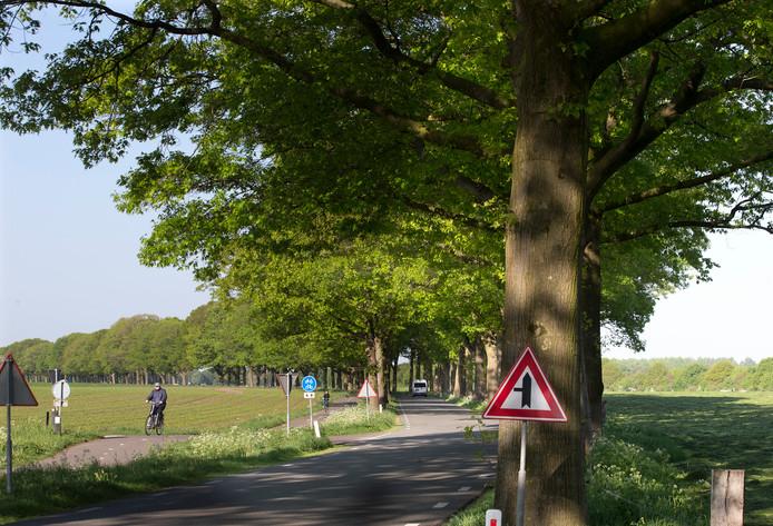 De Dinxperlosestraatweg in IJzerlo.