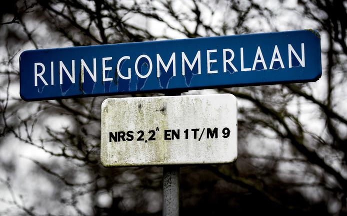 De Rinnegommerlaan in Egmond aan den Hoef waar de 18-jarige Esmee uit Egmond-Binnen door een automobilist werd aangereden en neergestoken.