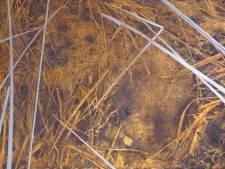 Kunstenares Lisa Beckers noemt zichzelf 'een grondkijker', expositie in Schaijk