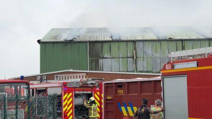 Grote afvalbrand bij Igean in Sint-Lenaarts