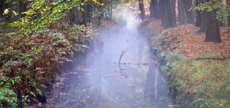 Waterschap: 'Sonse Heideloop niét gevaarlijk'
