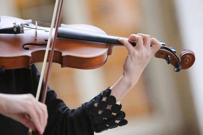 stockadr viool violist violiste klassieke muziek snaarinstrument