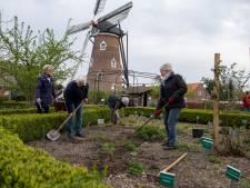 Markt met planten en kruiden uit Heemtuin D'n Doornhof