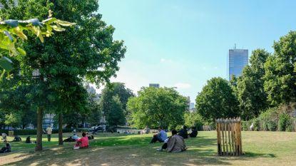 Meer blauw rond Hallepoortpark na drie pogingen tot doodslag