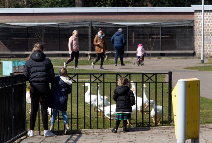 Er wordt door veel mensen zaterdagmiddag gewandeld in het Warandepark in Helmond.