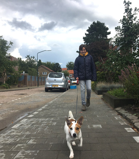 Gemeente Goirle verlaagt hondenbelasting