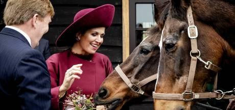 Gemeente Soest sluit na twee jaar gedogen 'illegale' horeca bij De Paardenkamp: ook pas geopende theetuin moet dicht