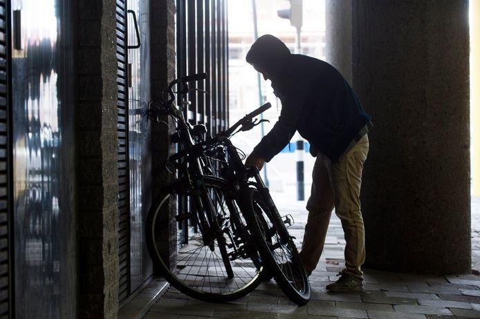 Een beetje fietsendief heeft geen moeite met de meeste sloten.
