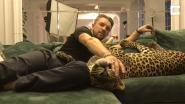 Deze Rus haalt eenzaam luipaard in huis