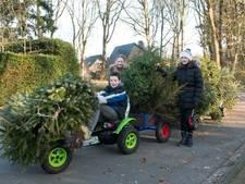 Kerstboom is kassa voor tieners Jantine, Heleen en Gerald