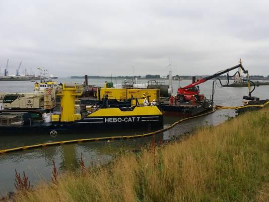 De schoonmaak van de oevers begon direct na de botsing op 23 juni.