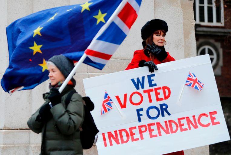 Britse demonstranten van beide kampen. Beeld null