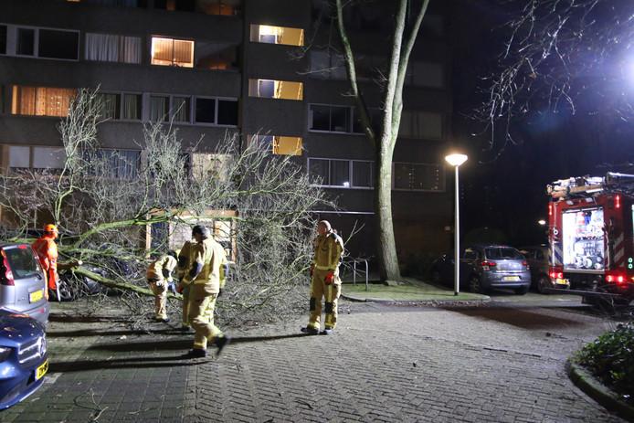 Een flinke boom is op een geparkeerde auto in Delft terecht gekomen.