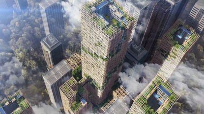 Dit moet de hoogste houten wolkenkrabber ter wereld worden