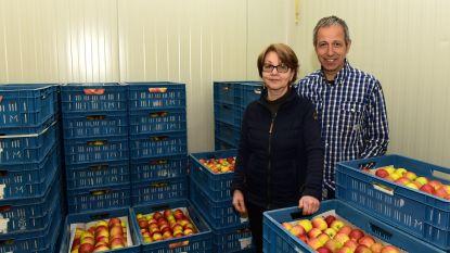 Van 150 tot 200 ton fruit elk jaar voor de Pajotse bevolking