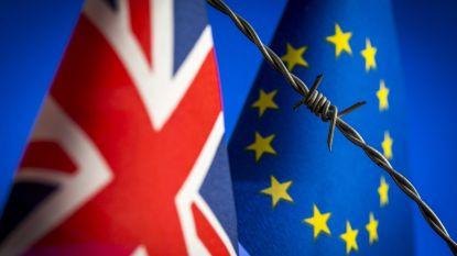 """""""Europeanen mogen zonder Brexit-deal in Groot-Brittannië blijven"""""""