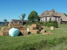 Verwondingen vrouw vallen mee na bouwen 'bruiloftspaar' van hooi in Ooij