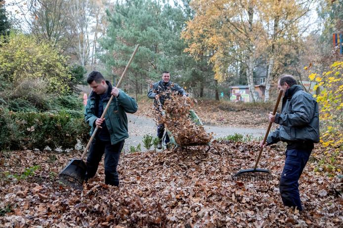 Philip, Arie en Bram houden met de tuinploeg van Sjaloom Zorg het kampeerterrein van De Paasheuvelgroep op Calfven bij Ossendrecht netjes.