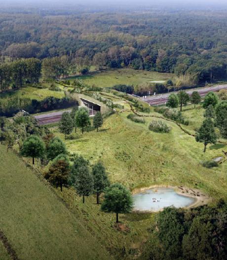 Dagje kijken op de 'dierenbrug' de Mortelen tussen Boxtel en Best