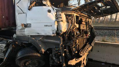 Als bij wonder enkel stoffelijke schade bij zwaar ongeval met vrachtwagens in Zeebrugge