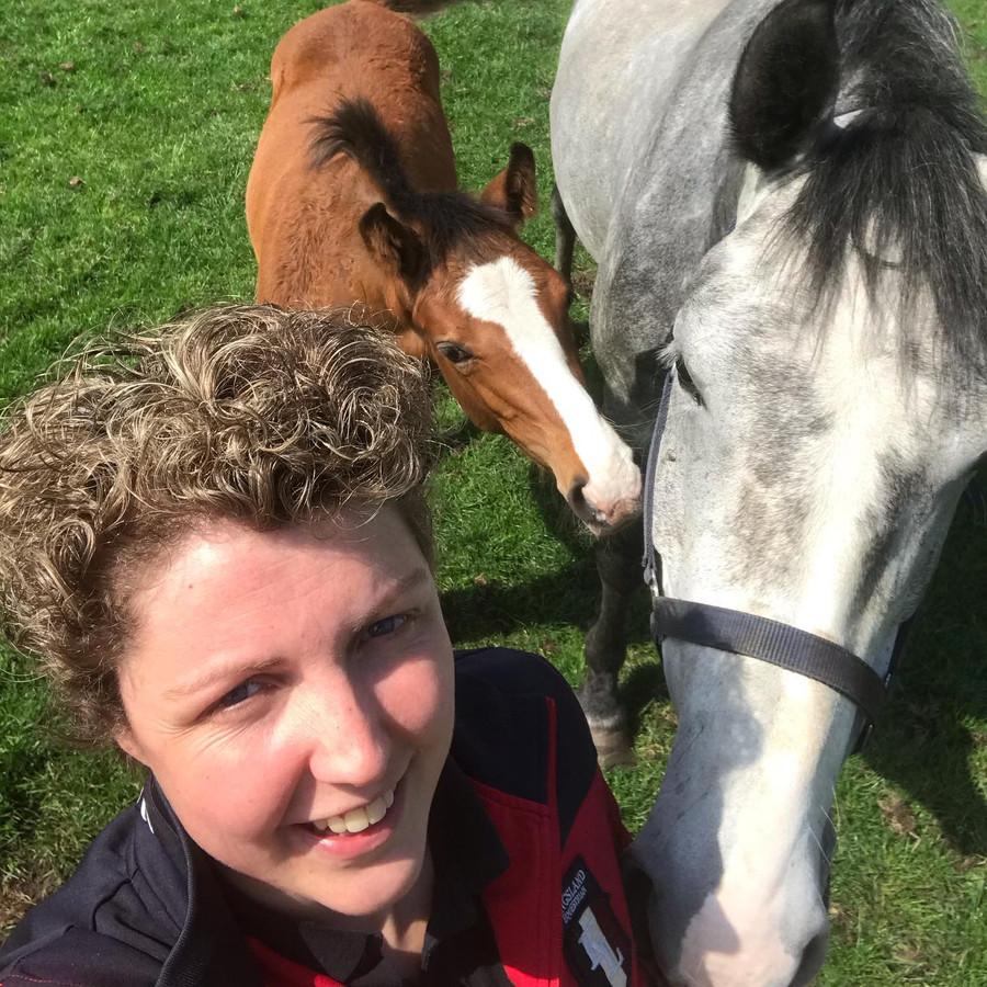 Steffi met haar paarden in de wei