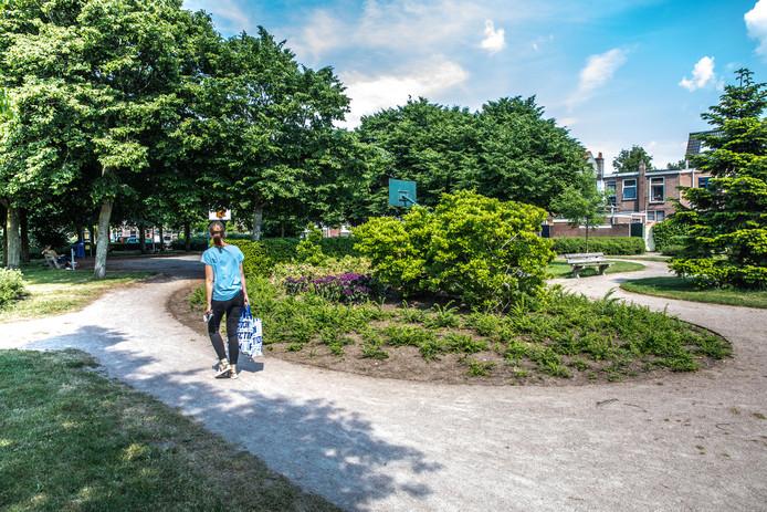 Het Azaleapark in de wijk Assendorp in Zwolle. Er zijn een basketbalveld, een voetbalweide en enkele zelfgemaakte speeltoestellen te vinden.