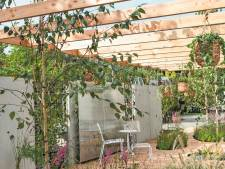 Ontstressen in de tuin: hoe meer struiken en bomen, hoe meer vogels je hoort fluiten