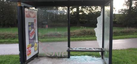 Opnieuw bushokje vernield tussen Rijssen en Nijverdal