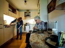 FNV voert actie voor huishoudelijke hulpen in Hulst