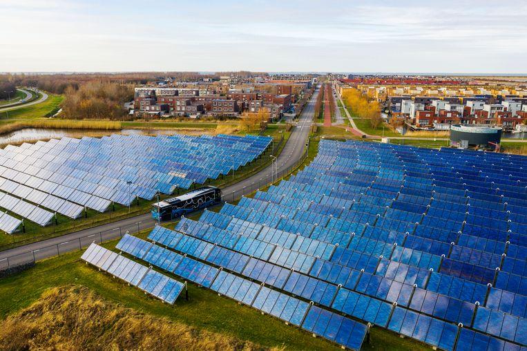 Zonnecollectoren kunnen energie opwekken voor het verwarmen van het water, zoals hier in Almere voor de achterliggende wijk. Beeld Michiel Wijnbergh/HH