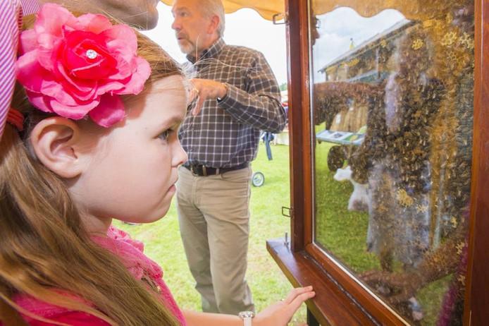 Oog in oog met een zwerm bijen. Gelukkig achter glas. [FOTOBRON]foto Maarten Sprangh