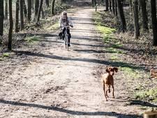 Hondenbezitters opgepast: zwijn is groot gevaar voor je viervoeter