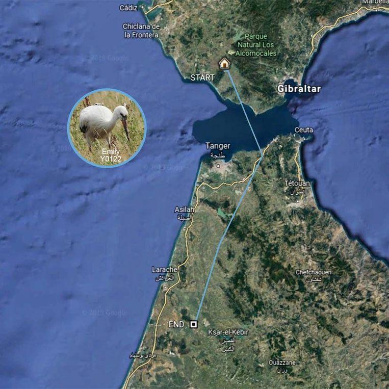 Emily vertoefde een tijdje in Spanje, maar zit ondertussen in het noorden van Afrika.