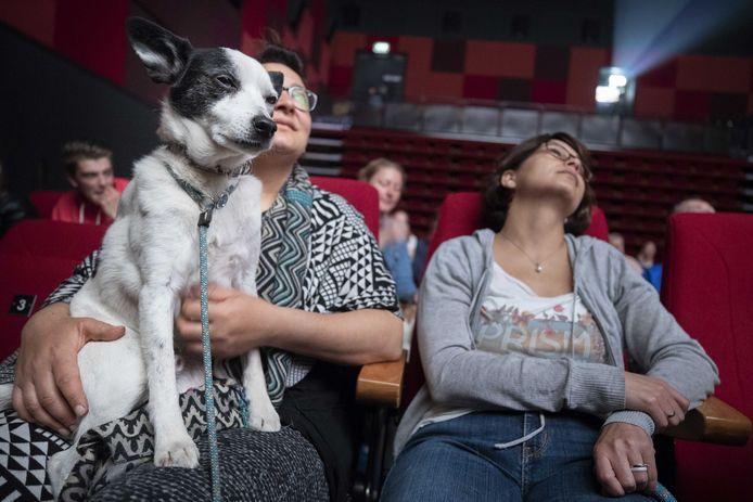 Honden met hun baasjes tijdens een doggy-voorstelling van de animatiefilm Isle of Dogs in bioscoop