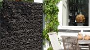 7 oplossingen voor meer privacy in je tuin