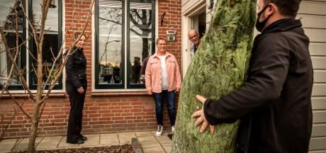 Een duurzame kerstboom: voor jouw kerstboom worden er elders ter wereld vijf geplant