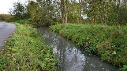 Stad treft voorbereidingen voor saneringswerken aan Wijzerbeek