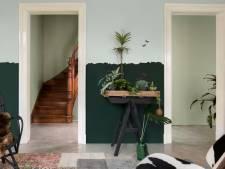 Het huis lentefris: zeven ideeën met een pot verf