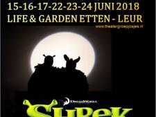 Theatergroep Josjes uit Etten-Leur sleept met poster  publieksprijs binnen bij AMA