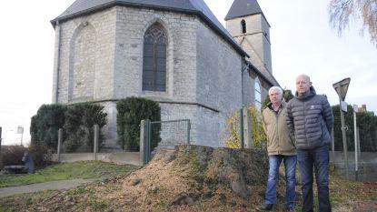 Burgemeester Partyka liet de oudste boom van Breisem kappen