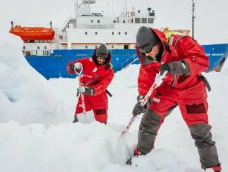 """Resistente superbacteriën duiken zelfs op in Antarctica: """"Tijd voor een globale oplossing"""""""