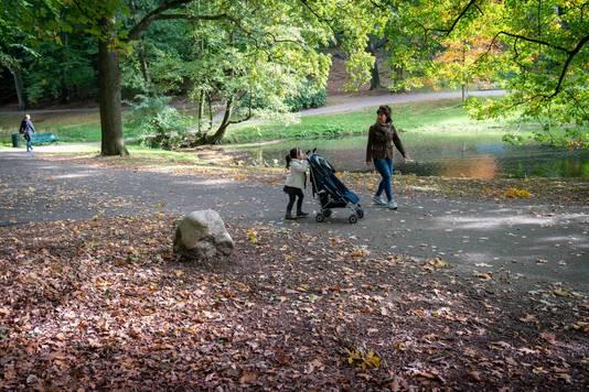 In Park Sonsbeek maak je 'de perfecte herfstwandeling'.