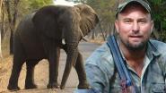 Doodgeschoten olifant verplettert jager