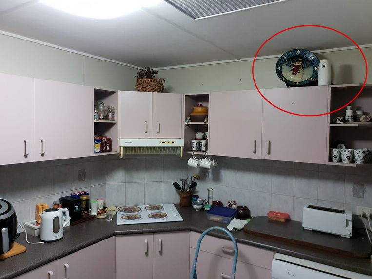 De slang had zich goed verstopt op de keukenkast.