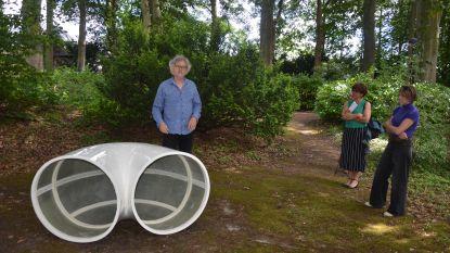 Kunstenaar Henk Delabie opent expo Blind Spot in Park Ter Beuken