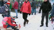 Oproep: stuur uw sneeuwvideo of -foto naar HLN