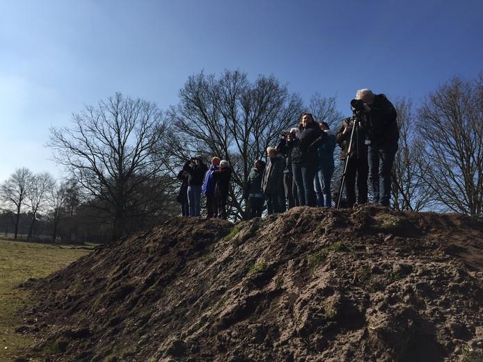 Een speciale uitkijkheuvel moet ervoor zorgen dat bezoekers meer kans hebben om de beesten te spotten