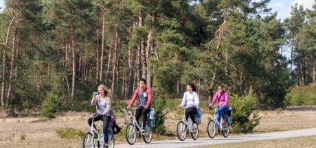 Komen er te veel toeristen naar Nunspeet? 'Onze bossen raken vol'
